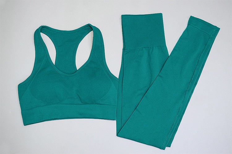 Seamless Gym Set Nylon suit for Woman