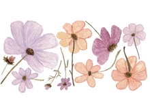 Load image into Gallery viewer, Wildflower (Mini) Decals