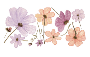 Wildflower Decals