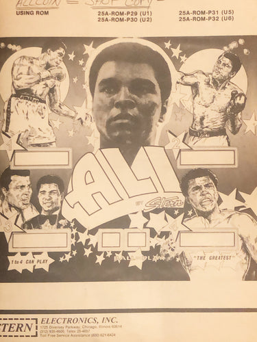 Ali Complete Pinball  Manual Book