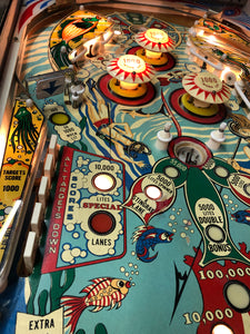 Stern 1978 Sting Ray Pinball Machine