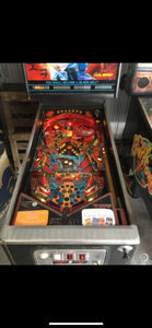 Black Belt Pinball Machine