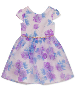 Rare Editions Toddler Girls Floral-Applique Organza Dress