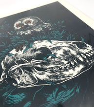 Load image into Gallery viewer, Owl & Skull Screenprint - 11x14
