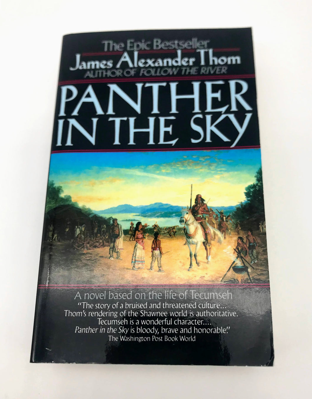 Panther in the Sky Book