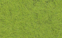 Load image into Gallery viewer, Static Grass Spring Green