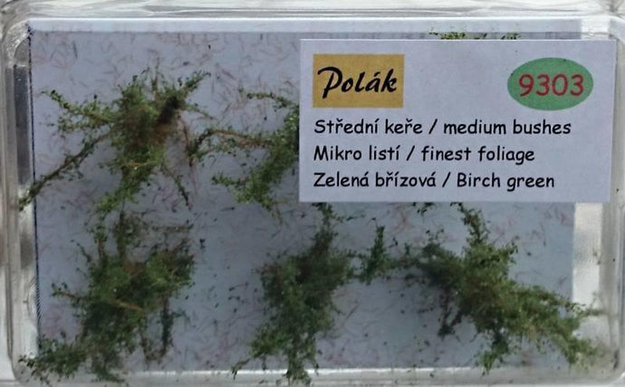 Medium Fine Foliage Birch Green Bushes - Poland's Best Home & Hobby