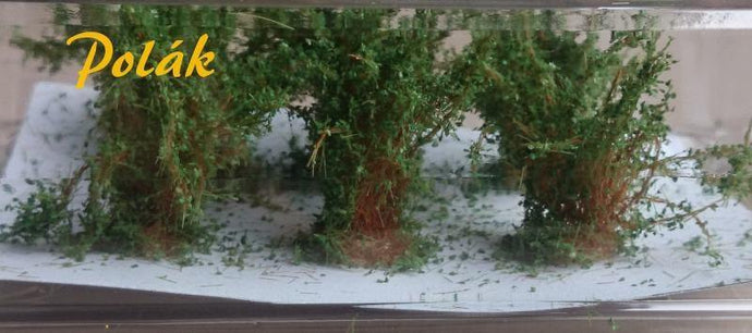 Aspen Colored Bushes 2.5 - 3 cm Item 9361 - Poland's Best Home & Hobby