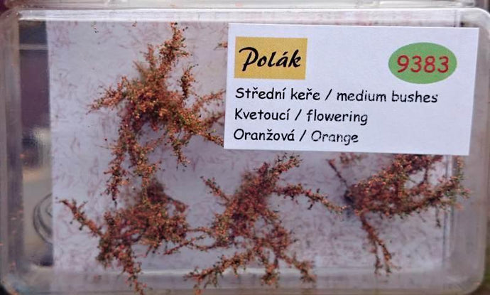 Medium Sized Flowering Bush 2.5 - 3 cm Orange Flowers Item 9383 - Poland's Best Home & Hobby