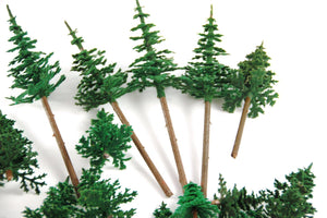 Spruce Tree Package Used Trees - Poland's Best Home & Hobby