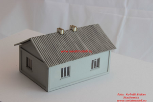 Laser Cut Country House With Asbestos Roof
