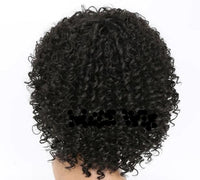 Afro Kinky Curly Lace Front Wigs-Wig-online-642-Black-hair-extensions-wigs.com