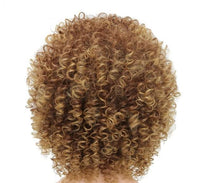 Afro Kinky Curly Lace Front Wigs-Wig-online-642-Blonde-hair-extensions-wigs.com