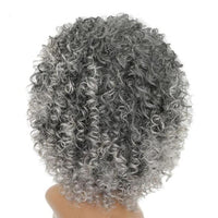 Afro Kinky Curly Lace Front Wigs-Wig-online-642-Grey-hair-extensions-wigs.com