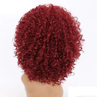 Afro Kinky Curly Lace Front Wigs-Wig-online-642-Red-hair-extensions-wigs.com