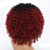 Afro Kinky Curly Lace Front Wigs-Wig-online-9024-hair-extensions-wigs.com