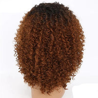 Afro Kinky Curly Lace Front Wigs-Wig-online-9074-hair-extensions-wigs.com