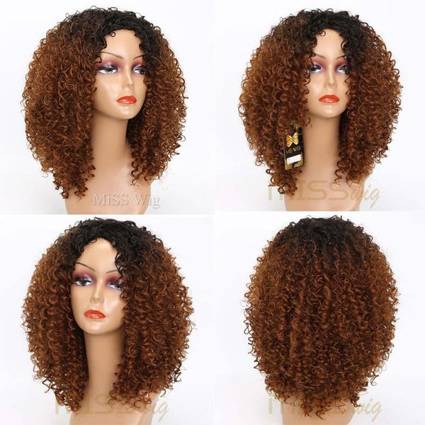 Afro Kinky Curly Lace Front Wigs-Wig-online-hair-extensions-wigs.com