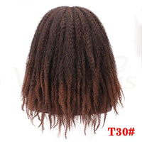 Dreadlocks Afro Kinky Curly Wig Synthetic-Curly Wig-online-T1B/30-hair-extensions-wigs.com