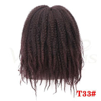Dreadlocks Afro Kinky Curly Wig Synthetic-Curly Wig-online-T1B/33-hair-extensions-wigs.com