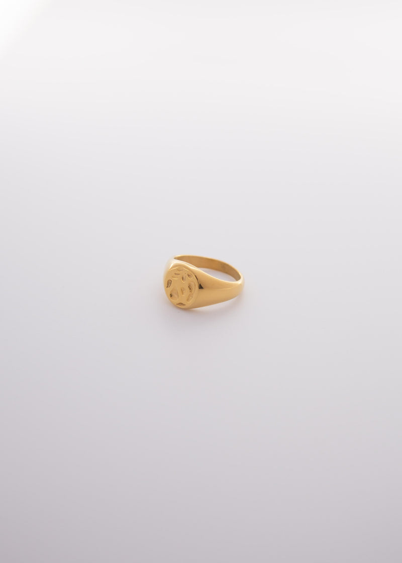 Spirits 18K Gold Plated Hammered Signet Ring