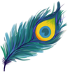 Peacock Smile