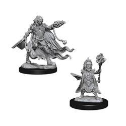 PATHFINDER: DEEP CUTS UNPAINTED MINIATURES - EVIL WIZARDS