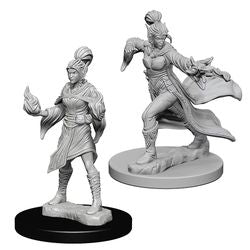PATHFINDER: DEEP CUTS UNPAINTED MINIATURES - ELF FEMALE SORCERER