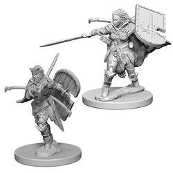PATHFINDER: DEEP CUTS UNPAINTED MINIATURES - HUMAN FEMALE PALADIN