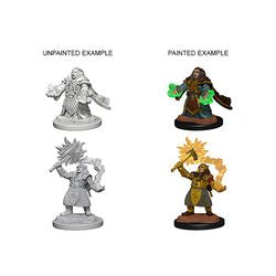 DUNGEONS AND DRAGONS: NOLZUR'S MARVELOUS UNPAINTED MINIATURES - DWARF FEMALE CLERIC