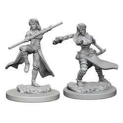 DUNGEONS AND DRAGONS: NOLZUR'S MARVELOUS UNPAINTED MINIATURES - HUMAN FEMALE MONK