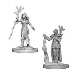 DUNGEONS AND DRAGONS: NOLZUR'S MARVELOUS UNPAINTED MINIATURES - HUMAN FEMALE DRUID