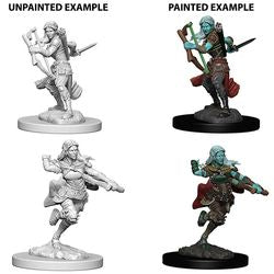 DUNGEONS AND DRAGONS: NOLZUR'S MARVELOUS UNPAINTED MINIATURES - AIR GENASI FEMALE ROGUE