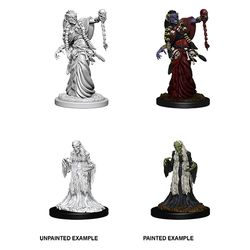 DUNGEONS AND DRAGONS: NOLZUR'S MARVELOUS UNPAINTED MINIATURES - GREEN HAG AND NIGHT HAG