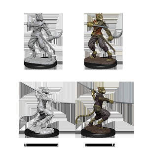DUNGEONS AND DRAGONS: NOLZUR'S MARVELOUS UNPAINTED MINIATURES - MALE TABAXI ROGUE