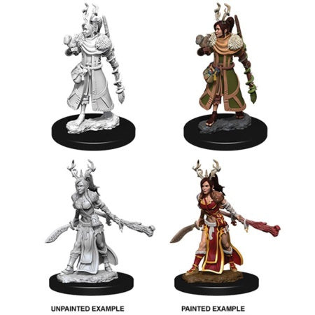 DUNGEONS AND DRAGONS: NOLZUR'S MARVELOUS UNPAINTED MINIATURES - FEMALE HUMAN DRUID