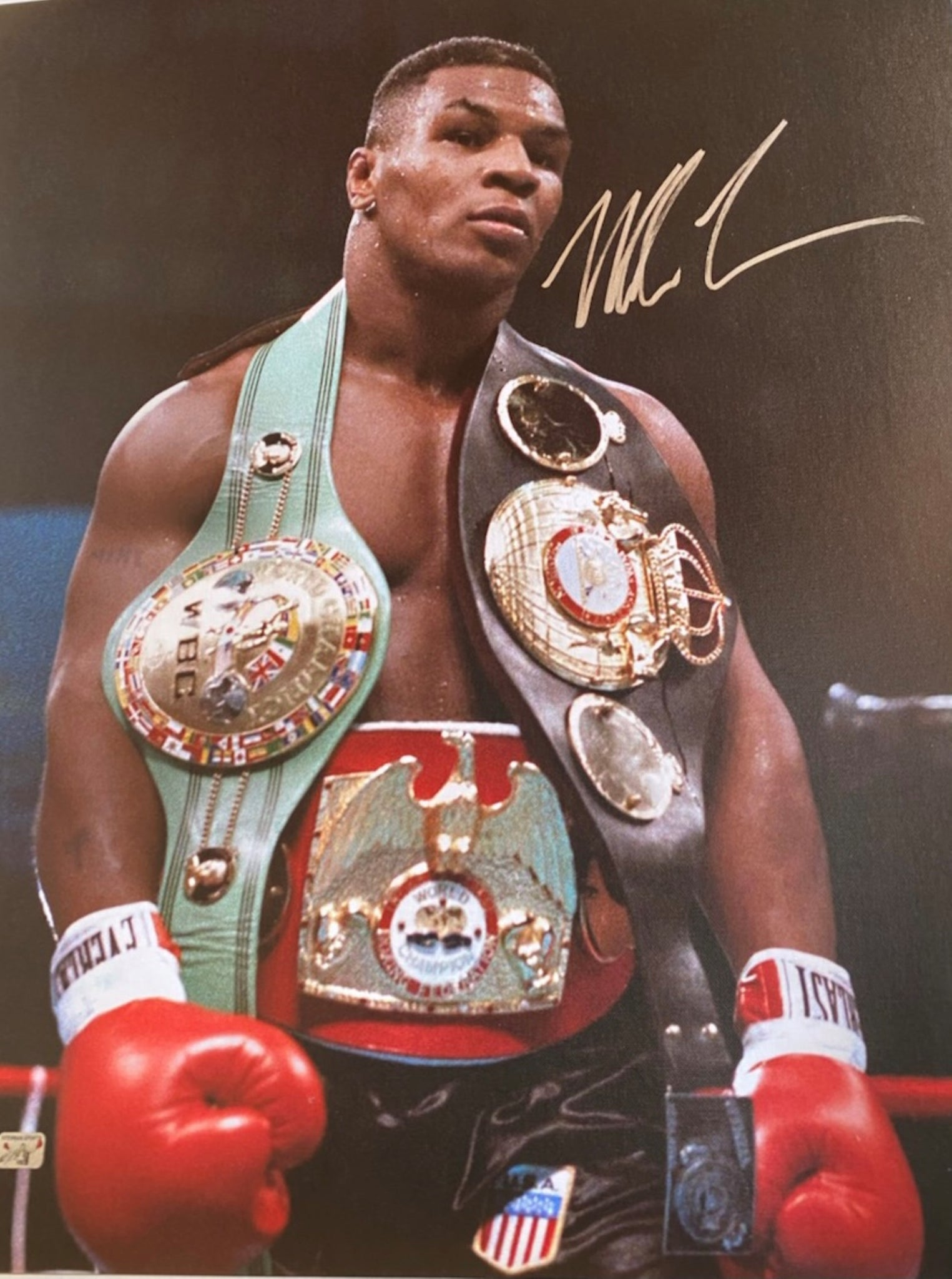 "Mike Tyson Authentic Autographed 24"" x 18"" Belts Canvas - Tyson Hologram"