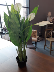 Artificial Peace Lily Plant