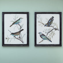 Load image into Gallery viewer, 'Maisly Bird' - 2 Piece Picture Frame Graphic Art #6266