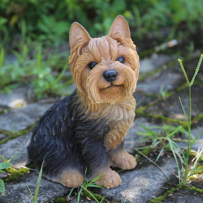 Sitting Yorkshire Terrier Dog Statue #6046