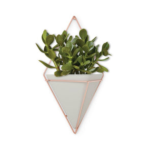 Trigg Ceramic Planter Wall Decor  -concrete/concrete  #5086
