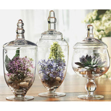 Load image into Gallery viewer, Clear Ralon 3 Piece Jar Set #895