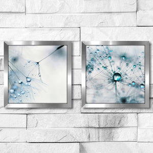 'Baby Blue' 2 Piece Framed Photographic Set #749