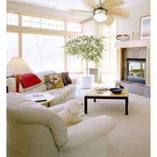 "Load image into Gallery viewer, 30"" Jules 6 Blade Ceiling Fan #669"