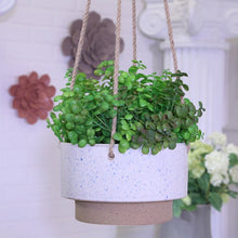 Load image into Gallery viewer, Lavonne Ceramic Hanging Planter #766