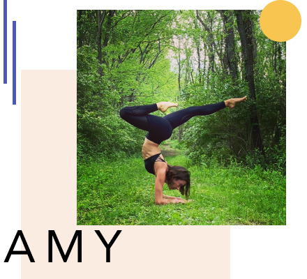 All Levels Flow with Amy Fecher
