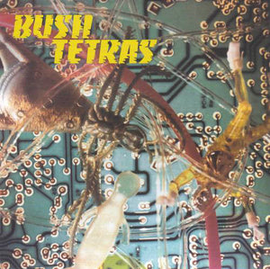 Bush Tetras - There Is a Hum / Seven Years