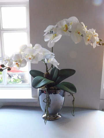 Barbara white artificial orchid arrangement in silver footed pot