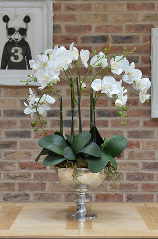 Davini- White Artificial Orchid arrangement in a silver punchbowl