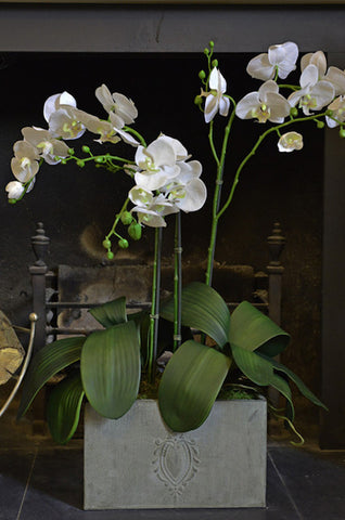 Suzanne - White Artificial Orchid in large metal trough